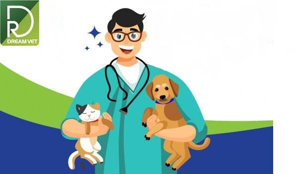 Bệnh viện thú y DreamPet
